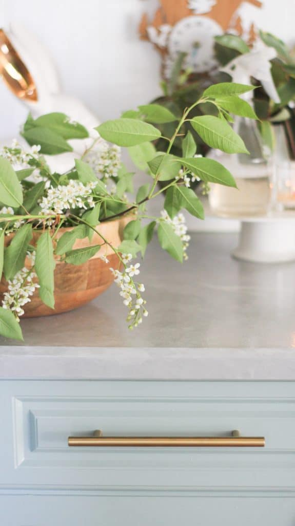 this is a photo of a bowl with flowers sitting on a painted kitchen countertop