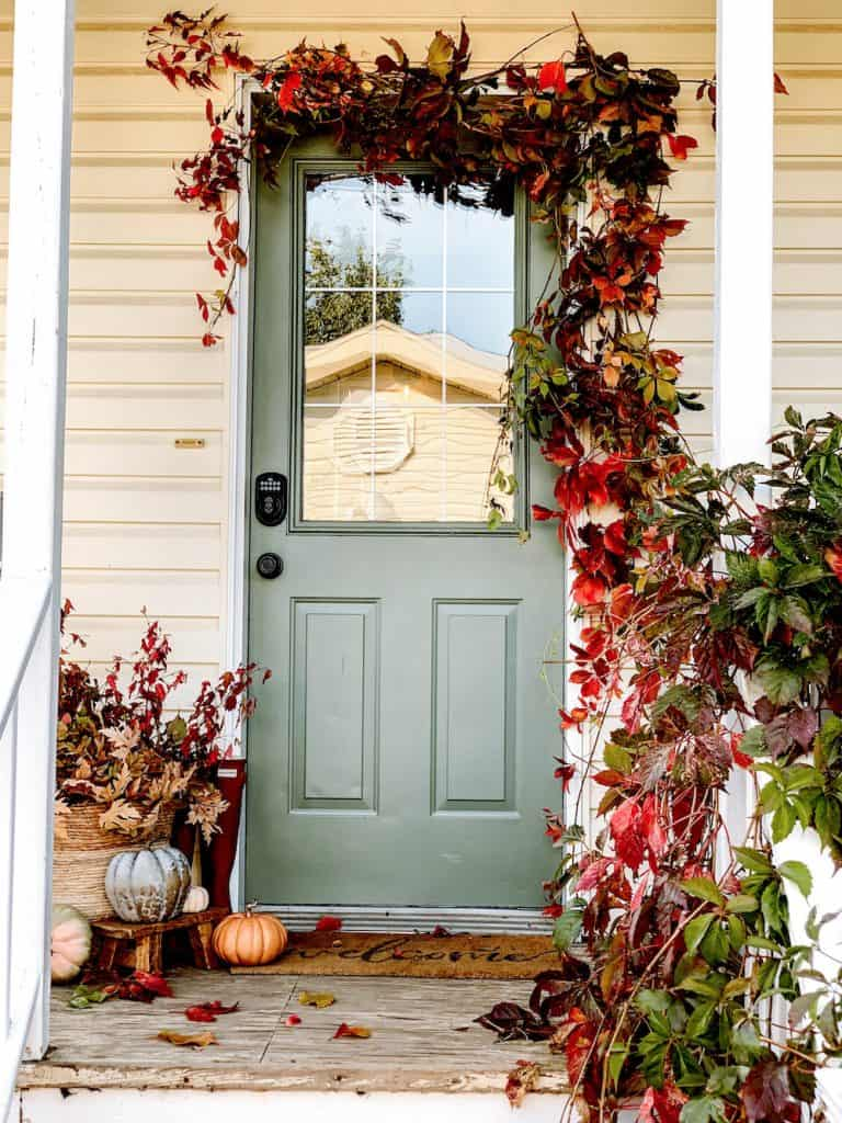 fall decor on back porch. Green door, pumpkins and flowing vine around door in reds and greens.