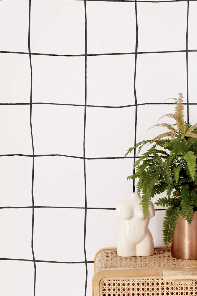 this is a photo of grid removable wallpaper and a plant